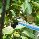 スマート農業ベンチャー「AGRIST」、農産物のAI自動収穫ロボットを開発